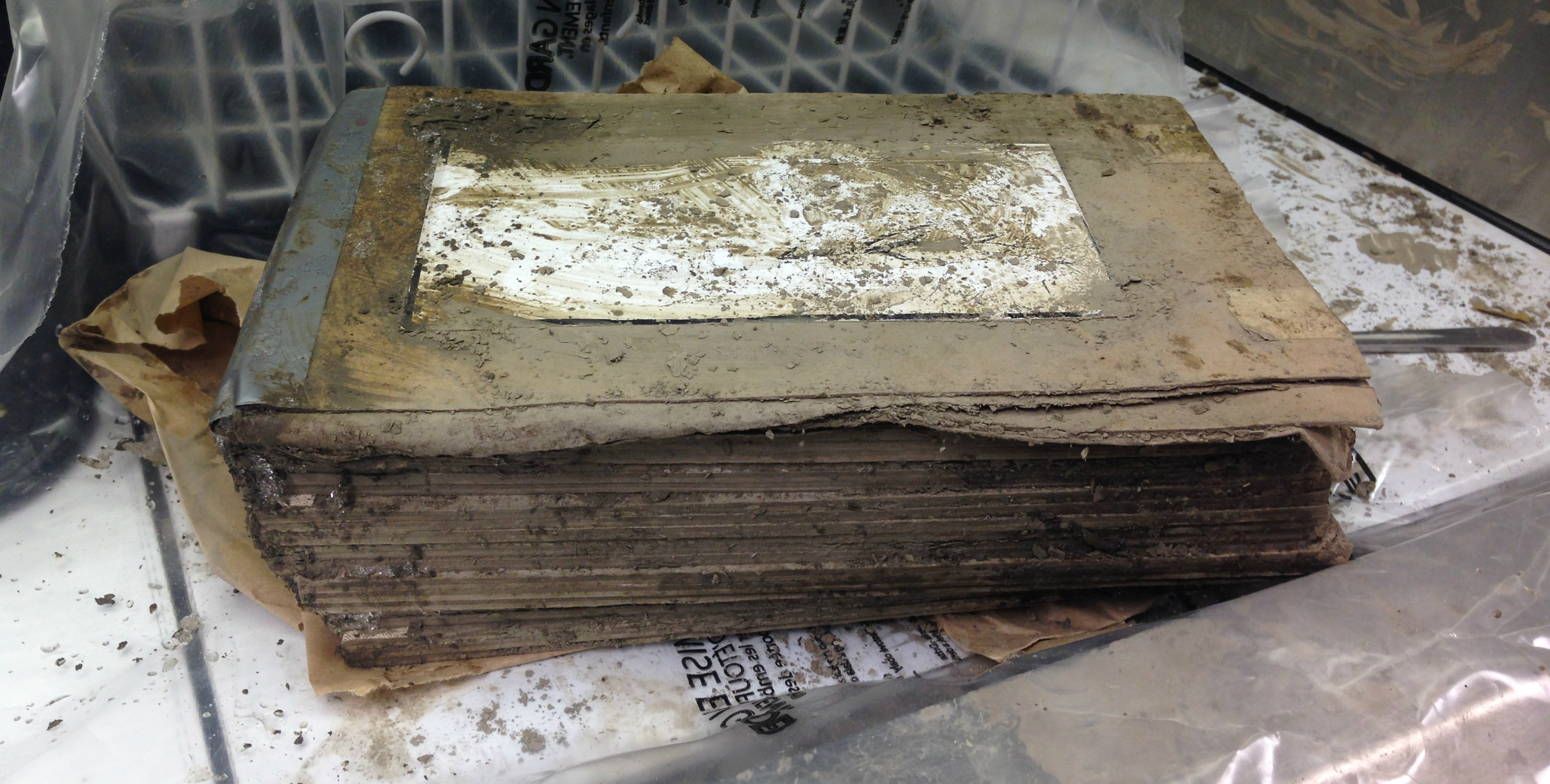 Photograph of a water-damaged and muddy book